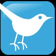Mn Birding News